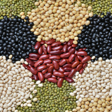 Five color legumes for healthy , Soy bean, Navy bean or white bean, Black beam, Red bean and Green bean,